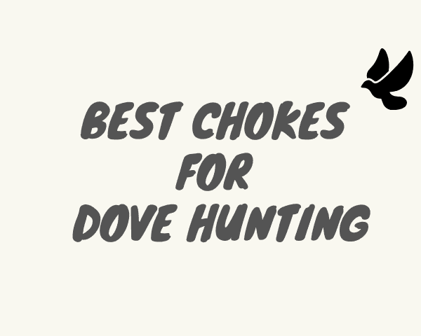 best chokes for dove hunting